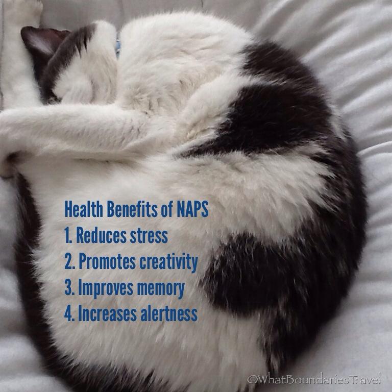 Naps are nice